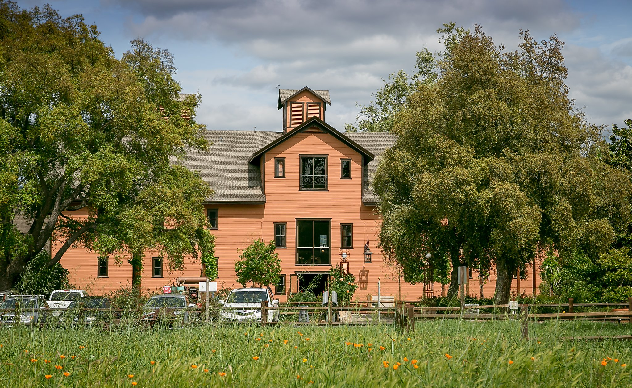 Napa Valley Wineries Ready To Welcome Bay Area Visitors photo