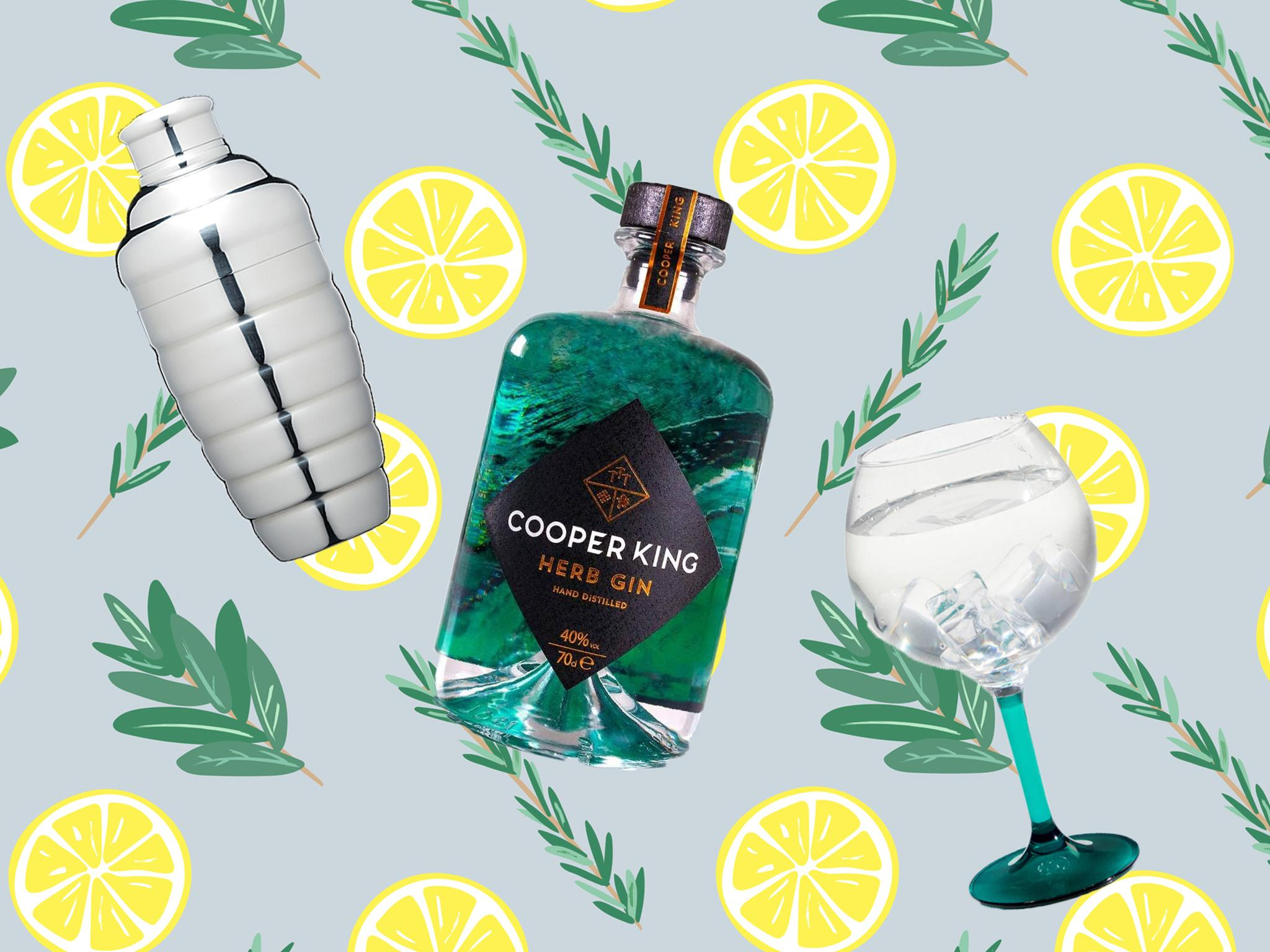 Gin Lovers Listen Up, Here's What You Need To Make The Perfect Drink photo