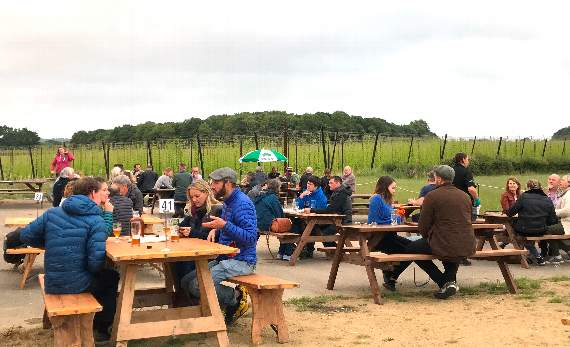 Hogs Back Brewery Opens Pub Garden After Successful Trial Run photo