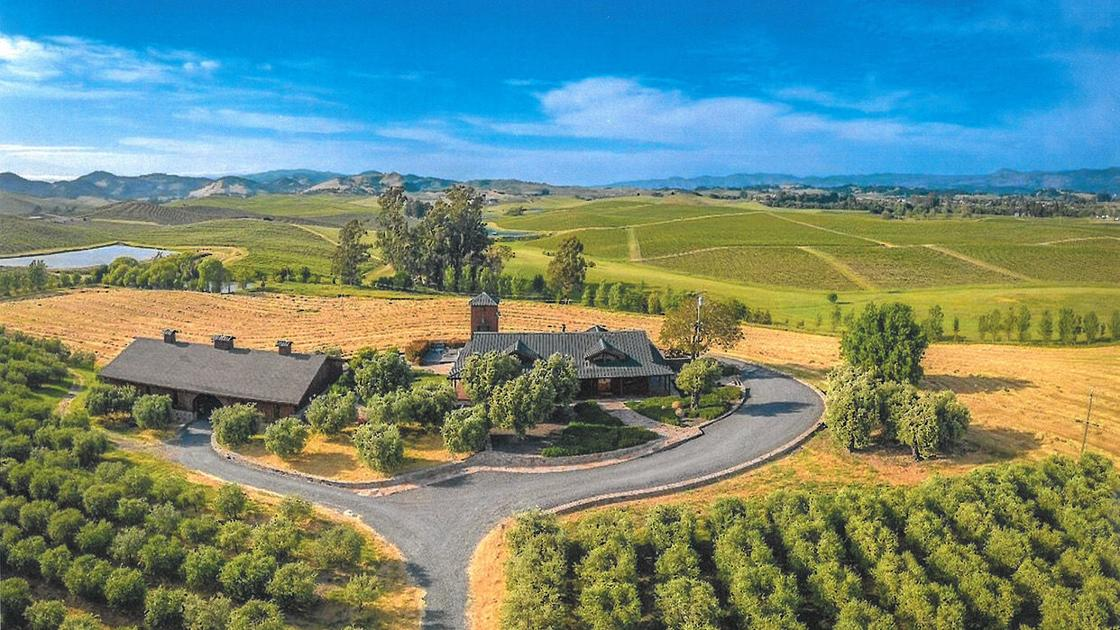 Bouchaine Vineyards Buys Carneros Olive Oil Property photo