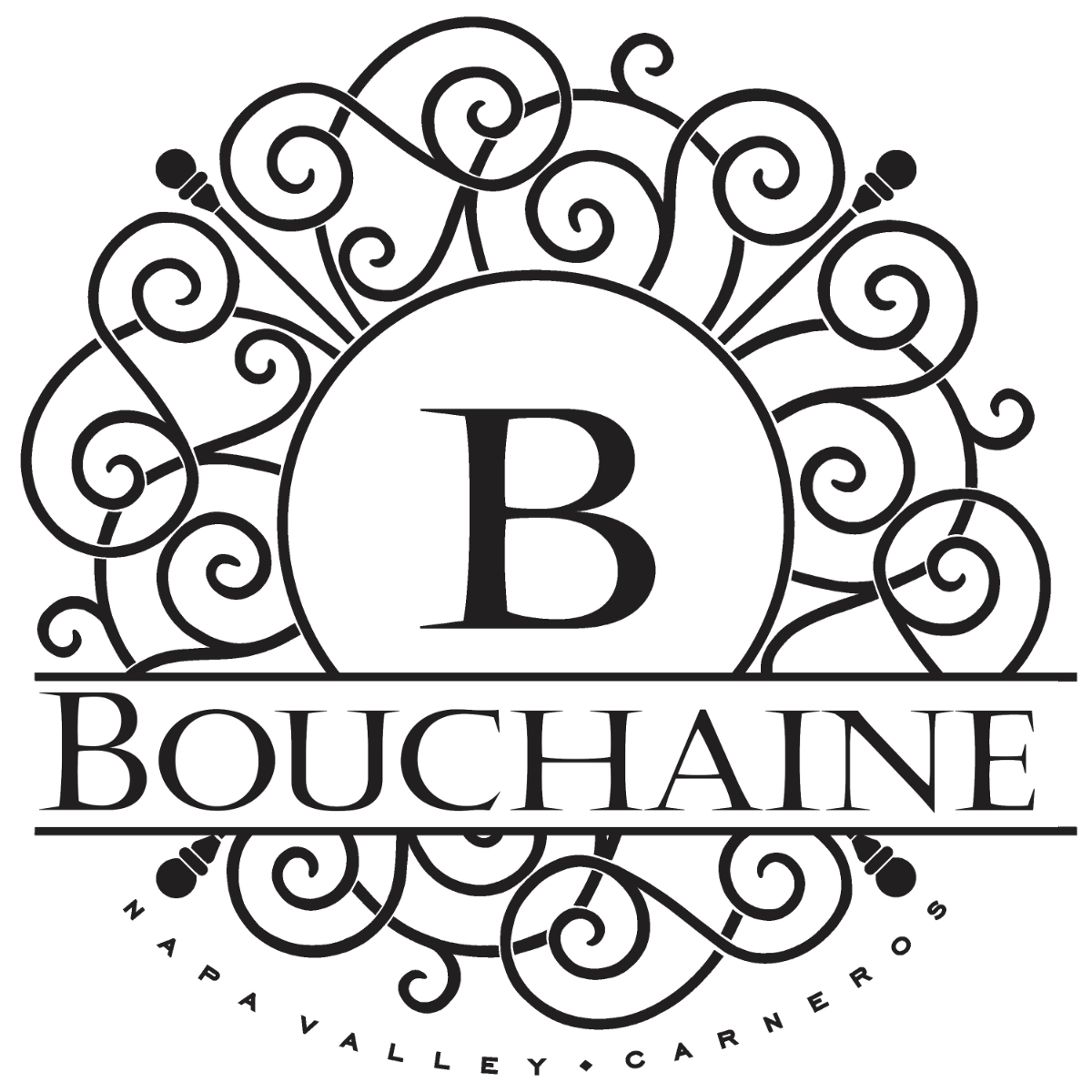 New Falconry Experience Dates At Bouchaine photo
