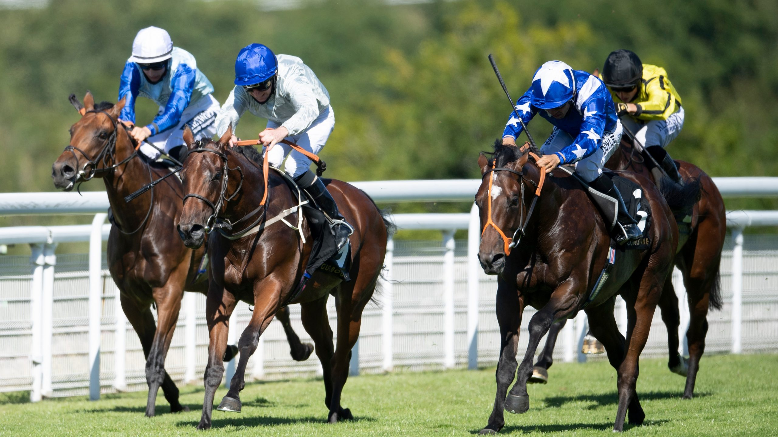 Mark Of The Man Gets Up To Win The Gusbourne Nursery Handicap photo