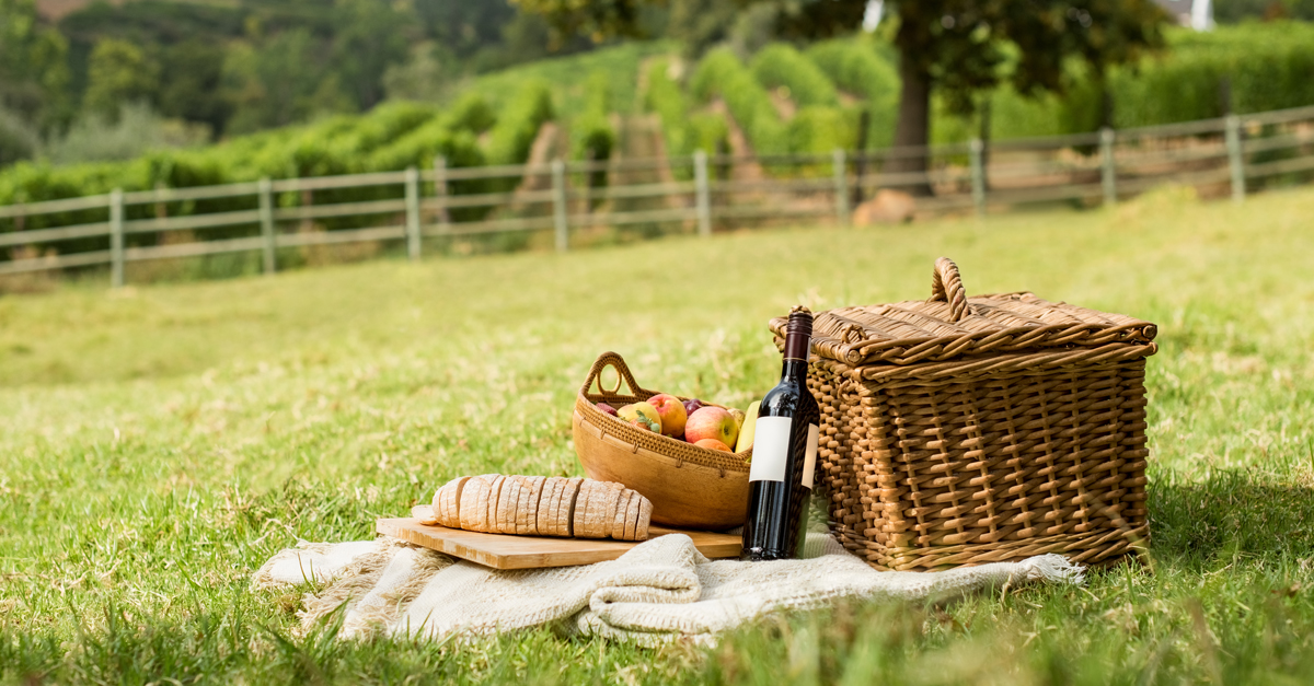 Everything You Need To Have A Wine & Cheese Picnic In Your Backyard photo