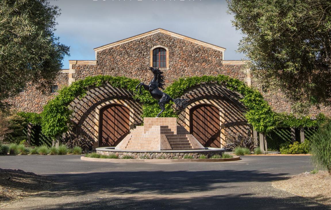 A Virtual Visit To Napa's Black Stallion Estate Winery photo
