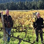 Chamonix Estate Joins Old Vines Project with 55-year-old Chenin Blanc photo