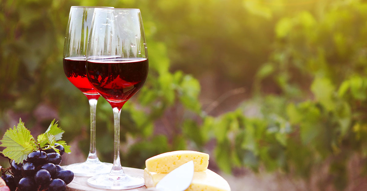 The 10 Best Red Wines For Summer photo