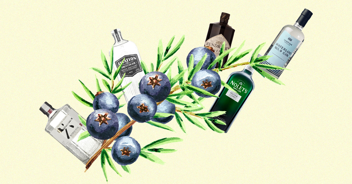 A Field Guide To New Western Dry Gin — From Balance To Botanicals To Brands photo