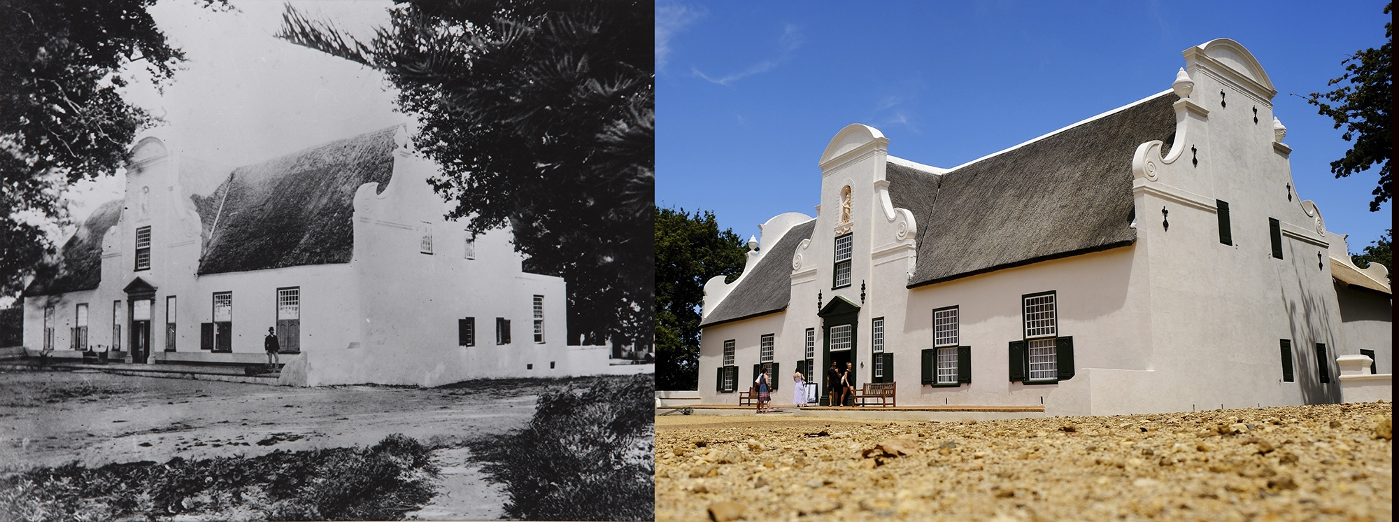 Groot Constantia: A Testimony To Survival photo