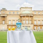 Gin Fit For A Queen! Buckingham Palace Releases Its Own Brand Of Gin photo