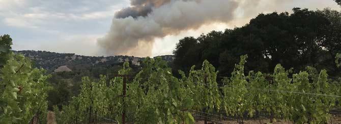 Fire Threatens Napa Vineyards photo