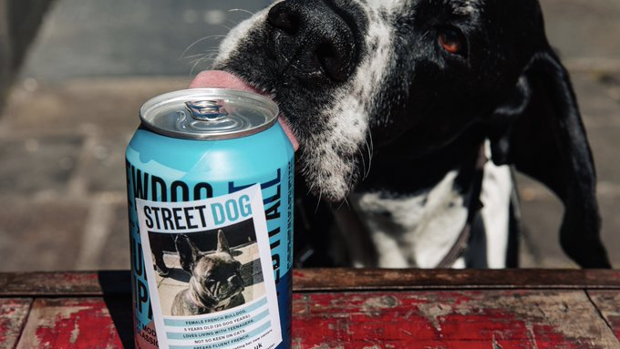 Brewdog Has Launched Street Dog Punk Ipa photo