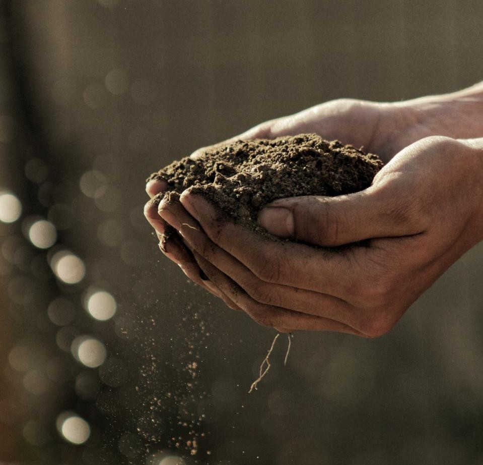 How to Calculate How Much Soil You Need for Your Garden photo