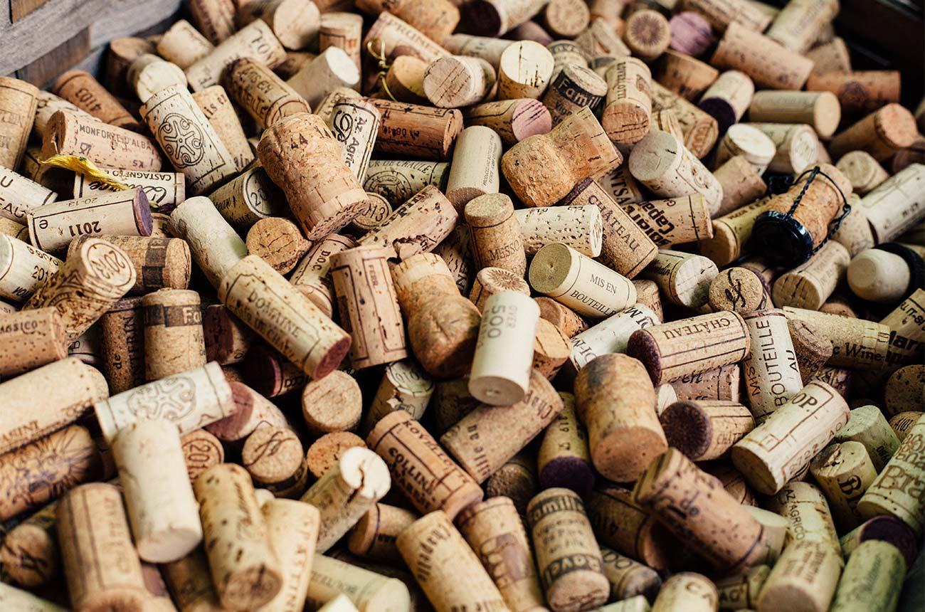 Elin Mccoy: Why Wine Matters photo