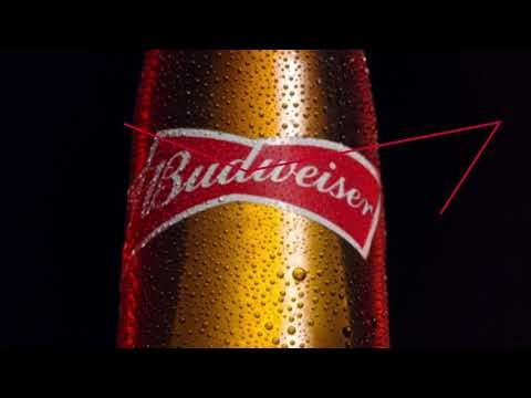 Budweiser: King Of Beers photo
