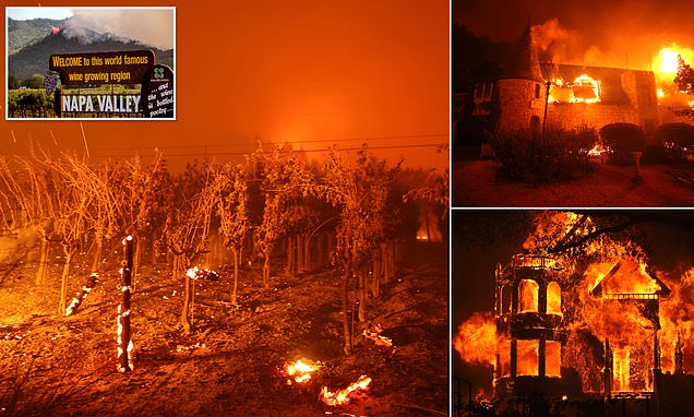 Famed Napa Valley Winery Destroyed By Fire As 2,000 Evacuated photo