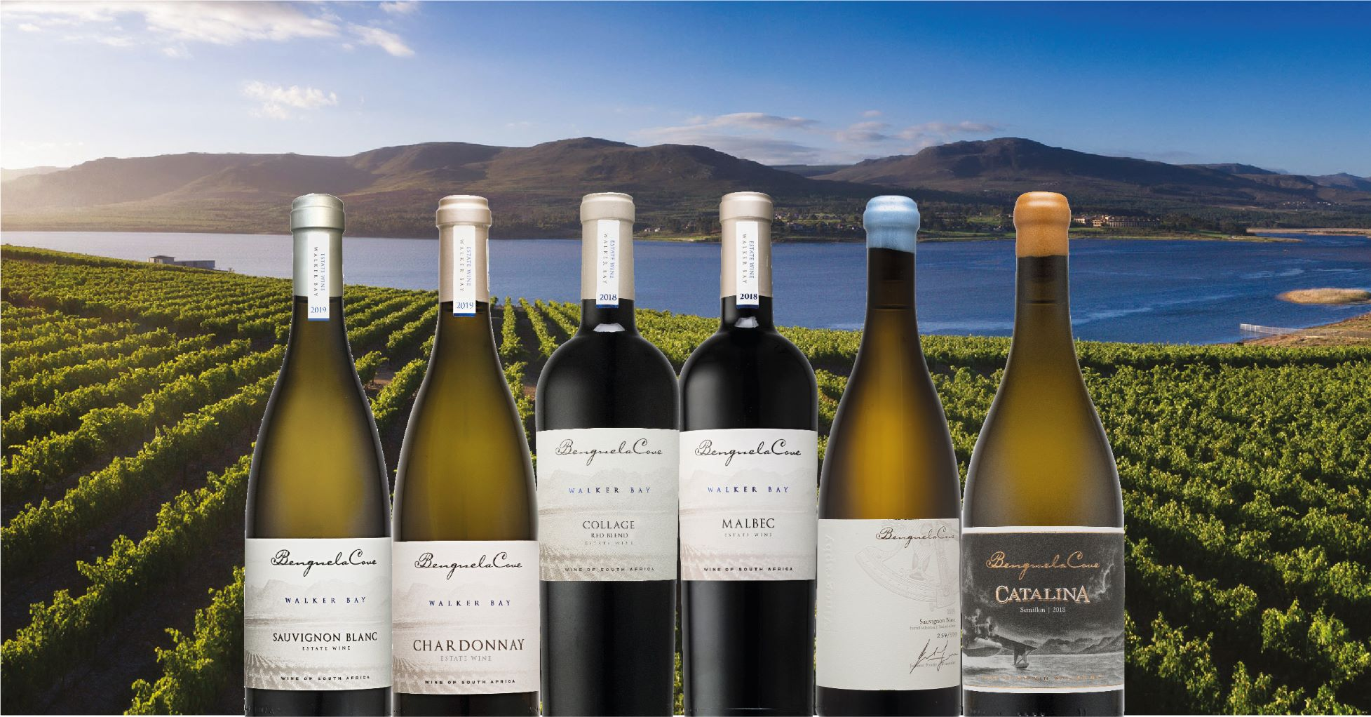 Medals of Excellence for Benguela Cove Estate Wines At 2020 Tim Atkin Report photo