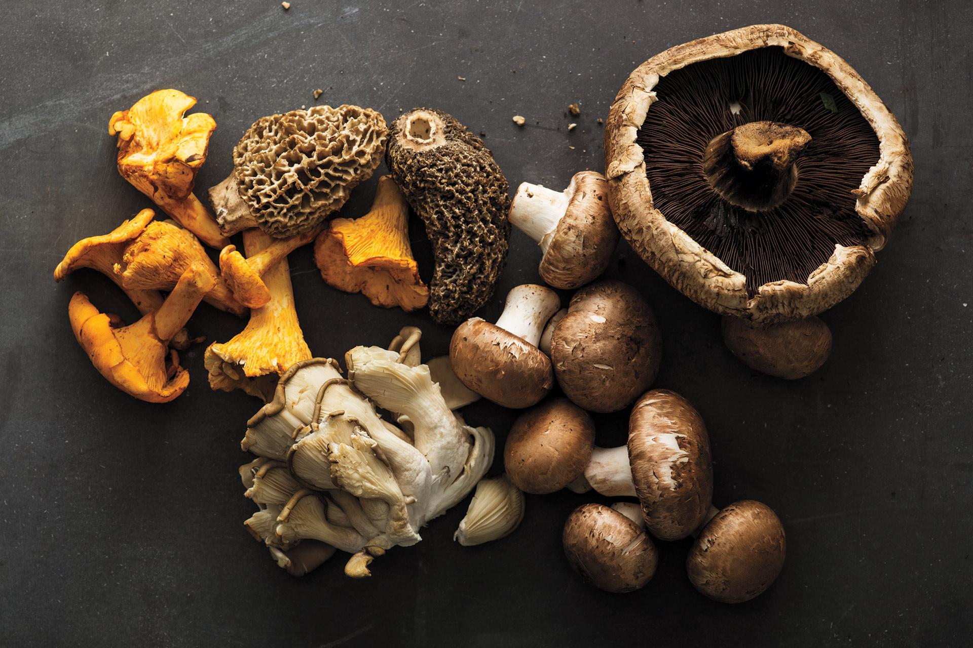Four Ways To Pair Mushrooms With Wine photo