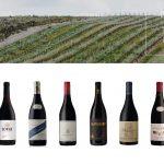 10 Best Wines In The 2020 Prescient Pinot Noir Report photo