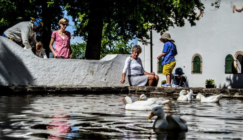 Celebrate Spring With A Visit To Groot Constantia photo