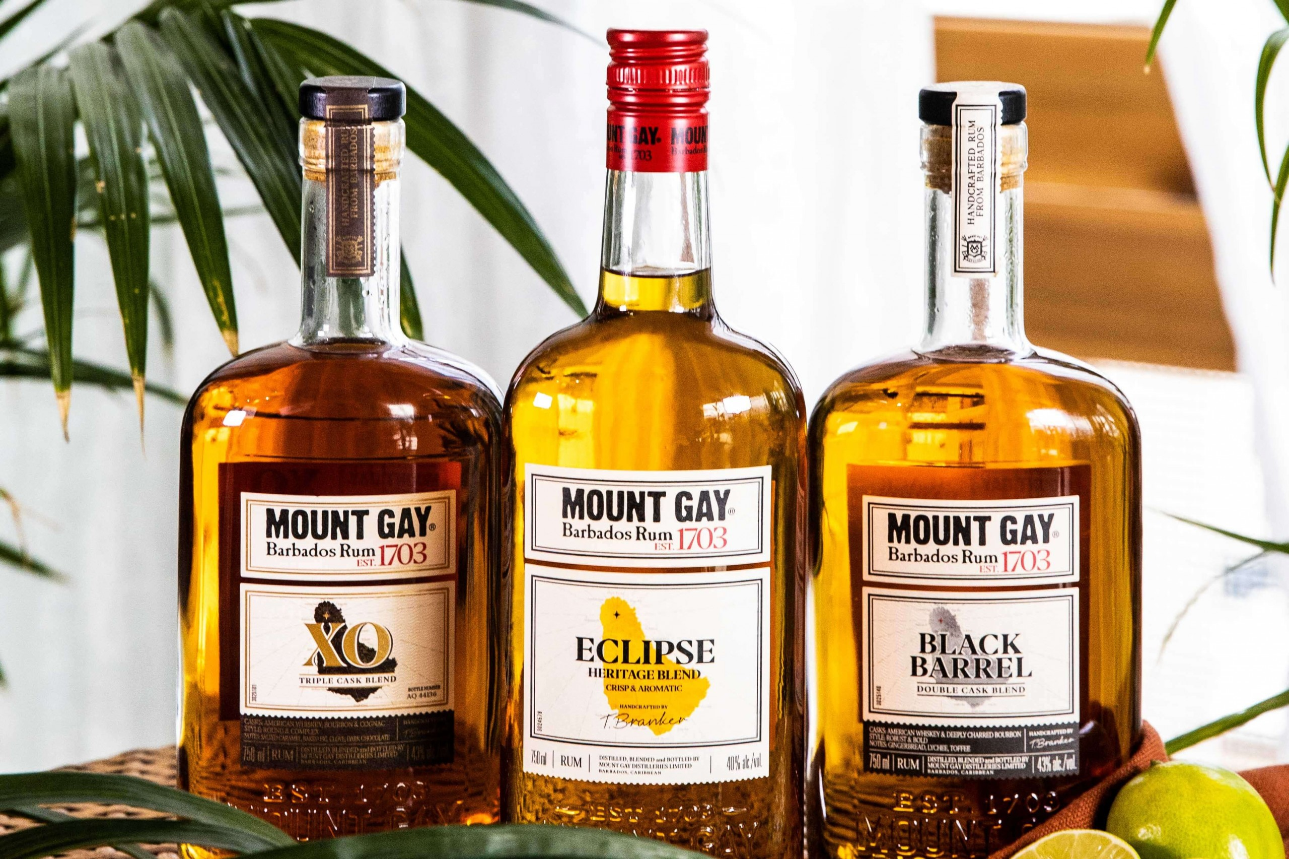 Mount Gay Rum Launches Taste Your Escape Retreat photo