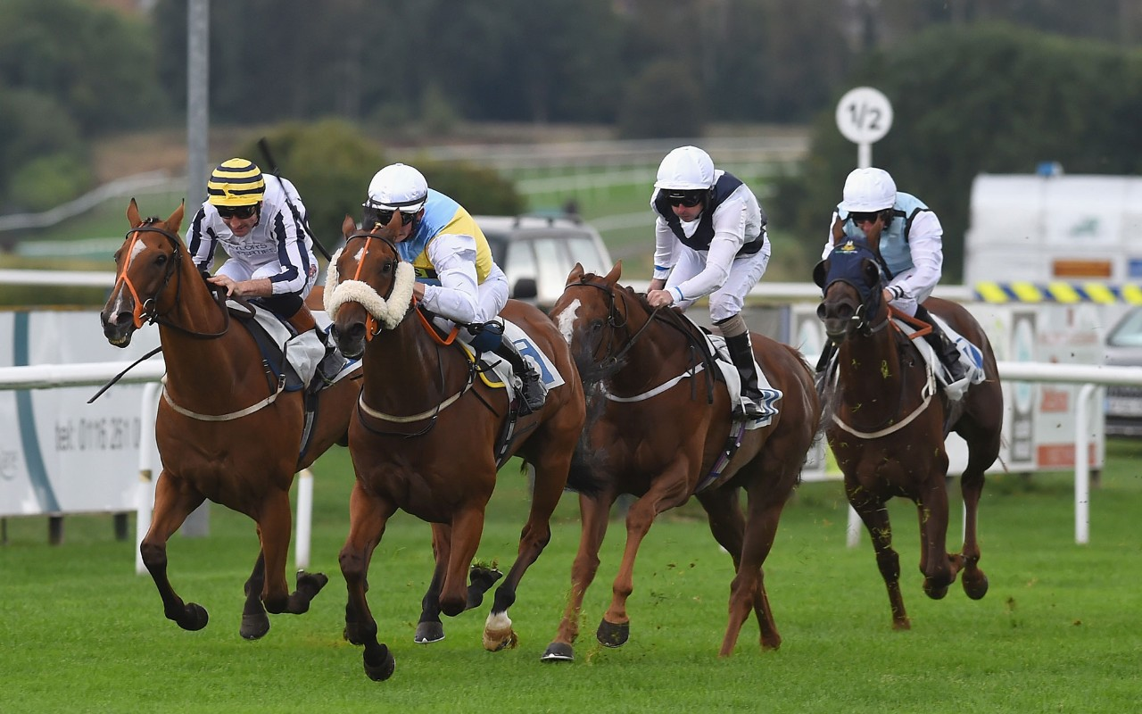 Sponsored: The Horse Racing Tips Today Come From Perth, Leicester And Windsor. Find Our Expert Tipster's Nap Of The Day, Next Best And Other Selections photo