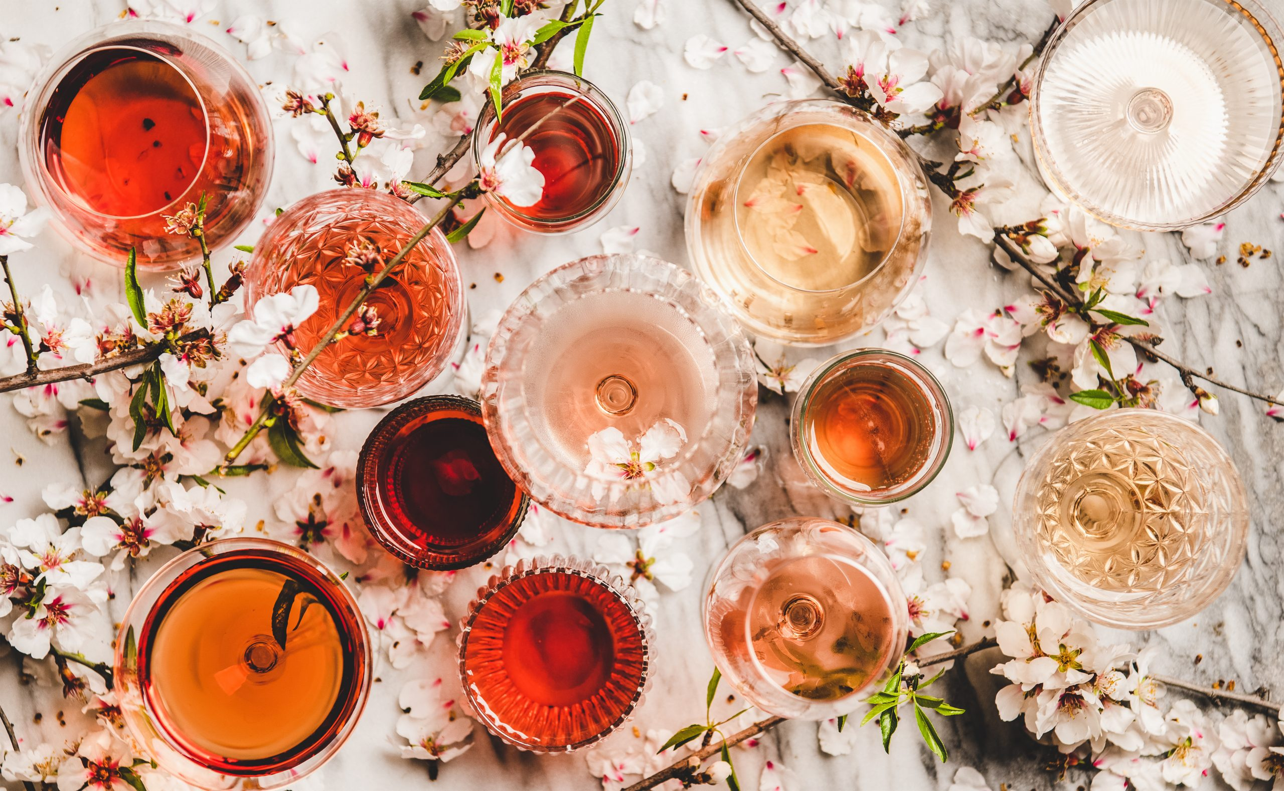 How Zinfandel Wine Is Different From Other Types Of Drinks photo