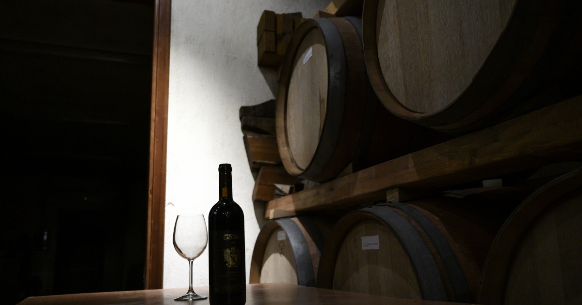 South Africa's Wine Industry Faces Bleak Future photo