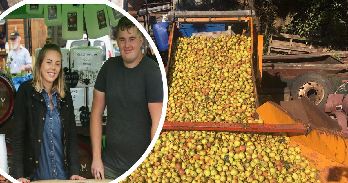 West Country Cider Producers To Support photo