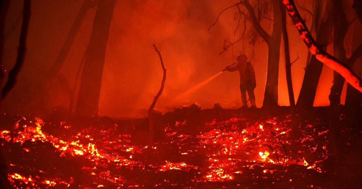 194 Restaurants, Vineyards, And Businesses Destroyed By Fast-moving Wine Country Fire photo