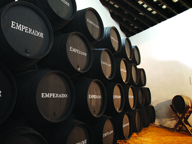 Overseas Demand Drives Emperador Earnings Up 26% In Q3 photo
