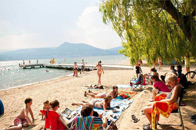 It Does Take A Village To Save A Beach photo