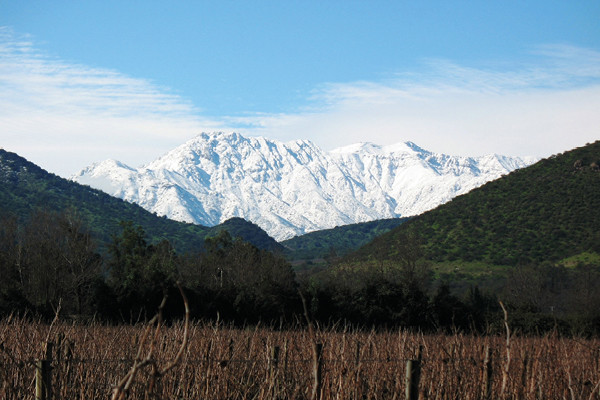 Tim Atkin Mw On Chile: 'bonkers' Wines From Exceptional Climates photo