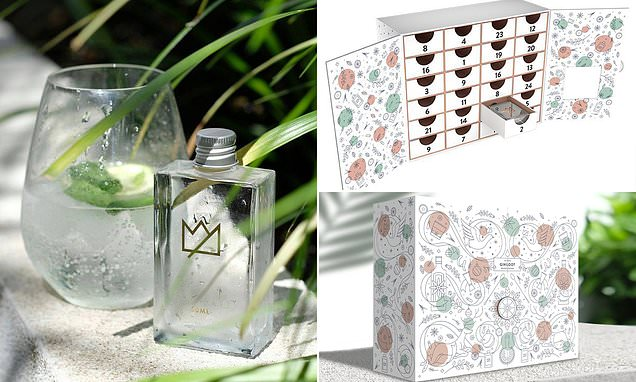 You Can Now Buy Gin Advent Calendars For Christmas photo
