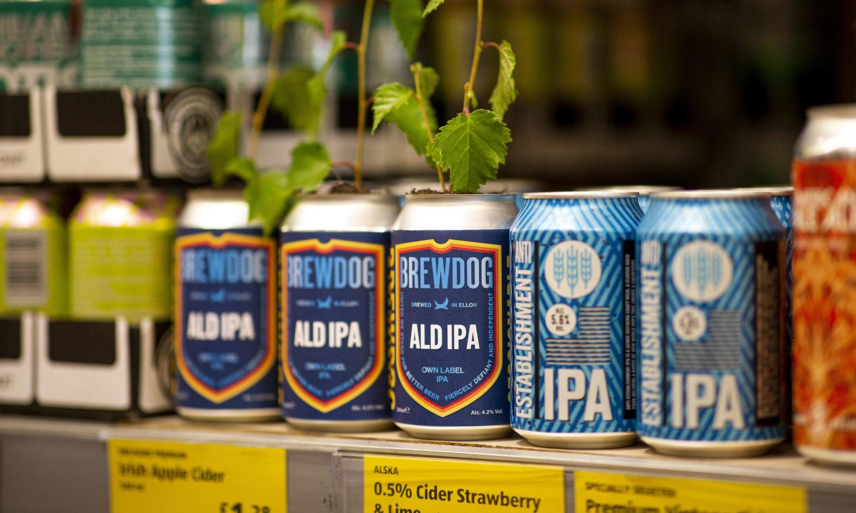 Brewdog And Aldi Call Time On Twitter Spat With New Beer Collaboration photo