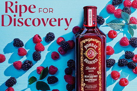 Bombay Bramble Gin An 'exciting And Disruptive Innovation', photo
