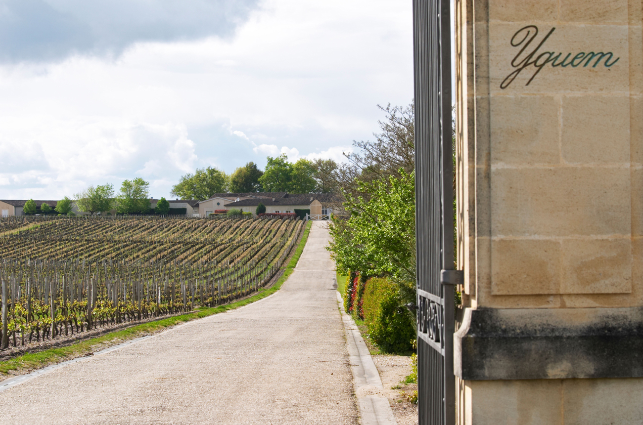 Place De Bordeaux Wines: Assessing The September Releases photo