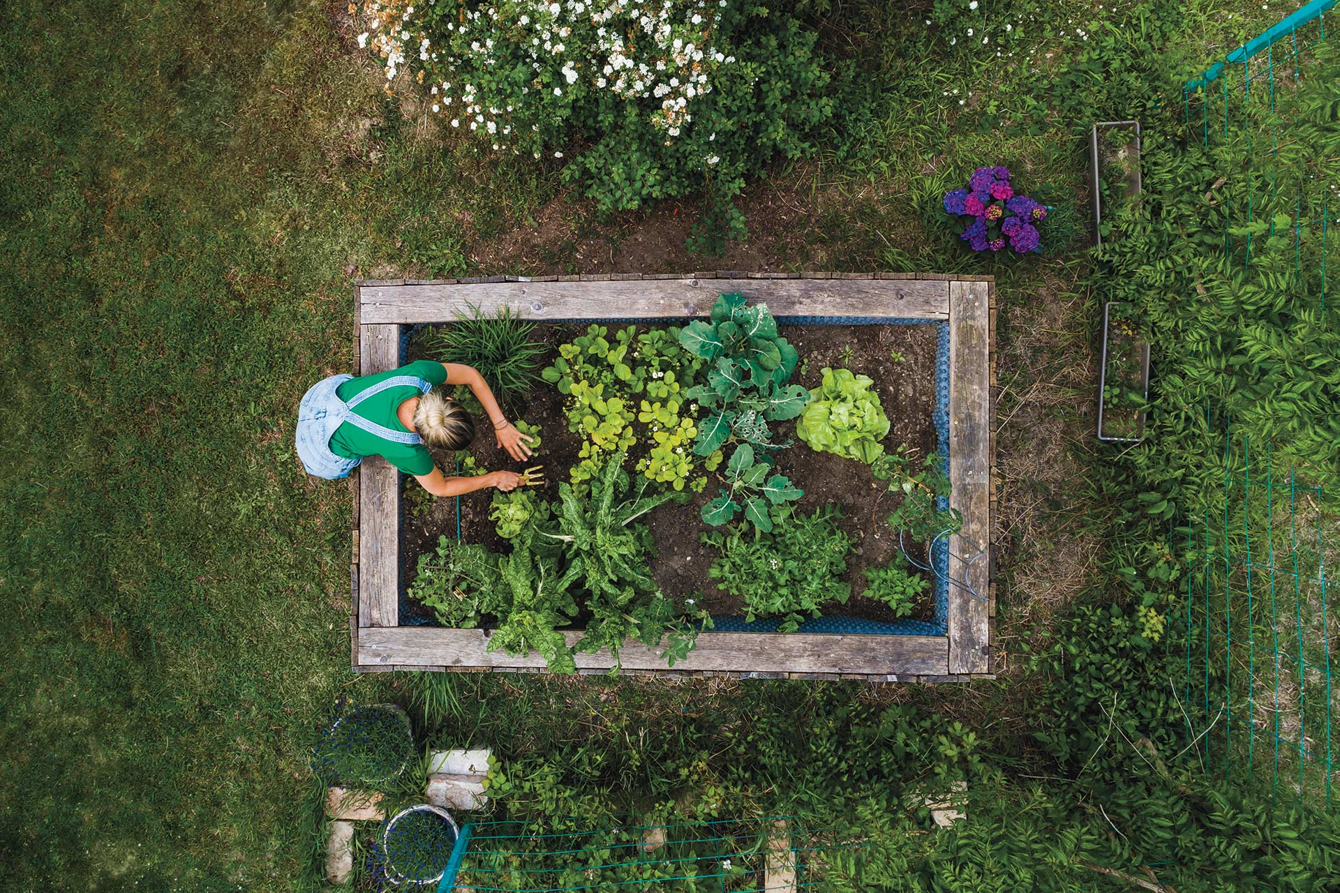 I've Always Loved Wine, But Home Gardening Made Me Appreciate It Even More photo
