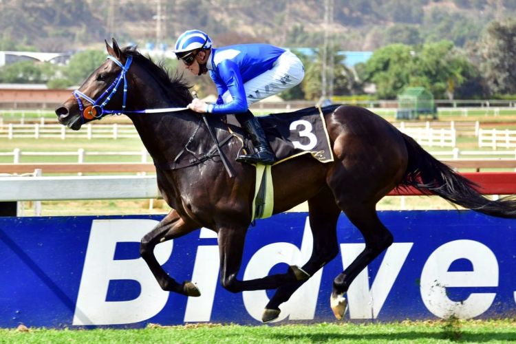 Turffontein Pick 6 photo