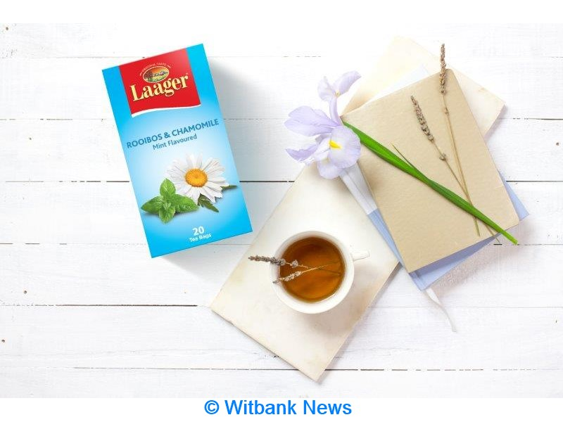 Laager Rooibos Shares Six Tips To Deal With End-of-year Exam Stress photo