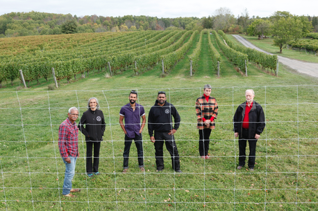 Provincial Program Helps Avondale Sky Winery Combat Crop Loss With Deer Fencing photo