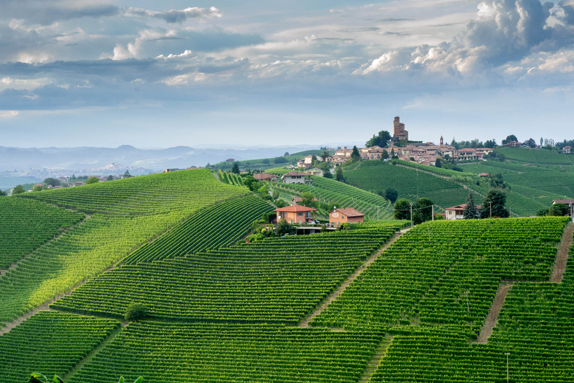 The Making Of A 100-point Wine: A Barolo With Structure, Energy And Balance photo