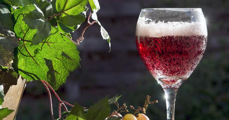 Sparkling Red Wine Market To Witness Stunning Growth photo