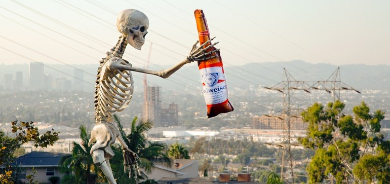 Budweiser Embraces 'bones & Bud' Meme With Life-size Beer Pillow photo