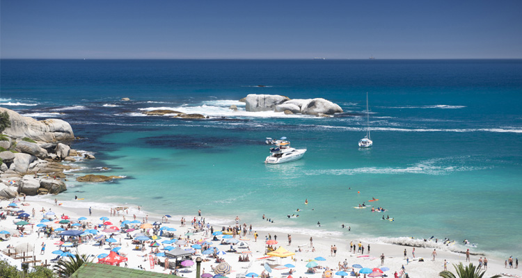 The Best Boat Trips In Cape Town photo