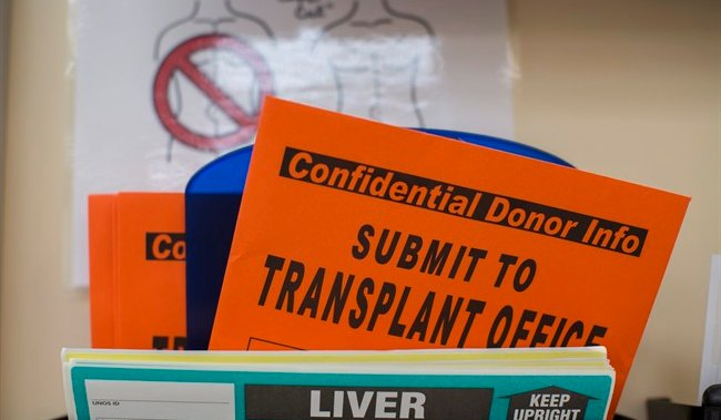 Ontario Considers End To 6-month Abstinence Requirement For Liver Transplants photo