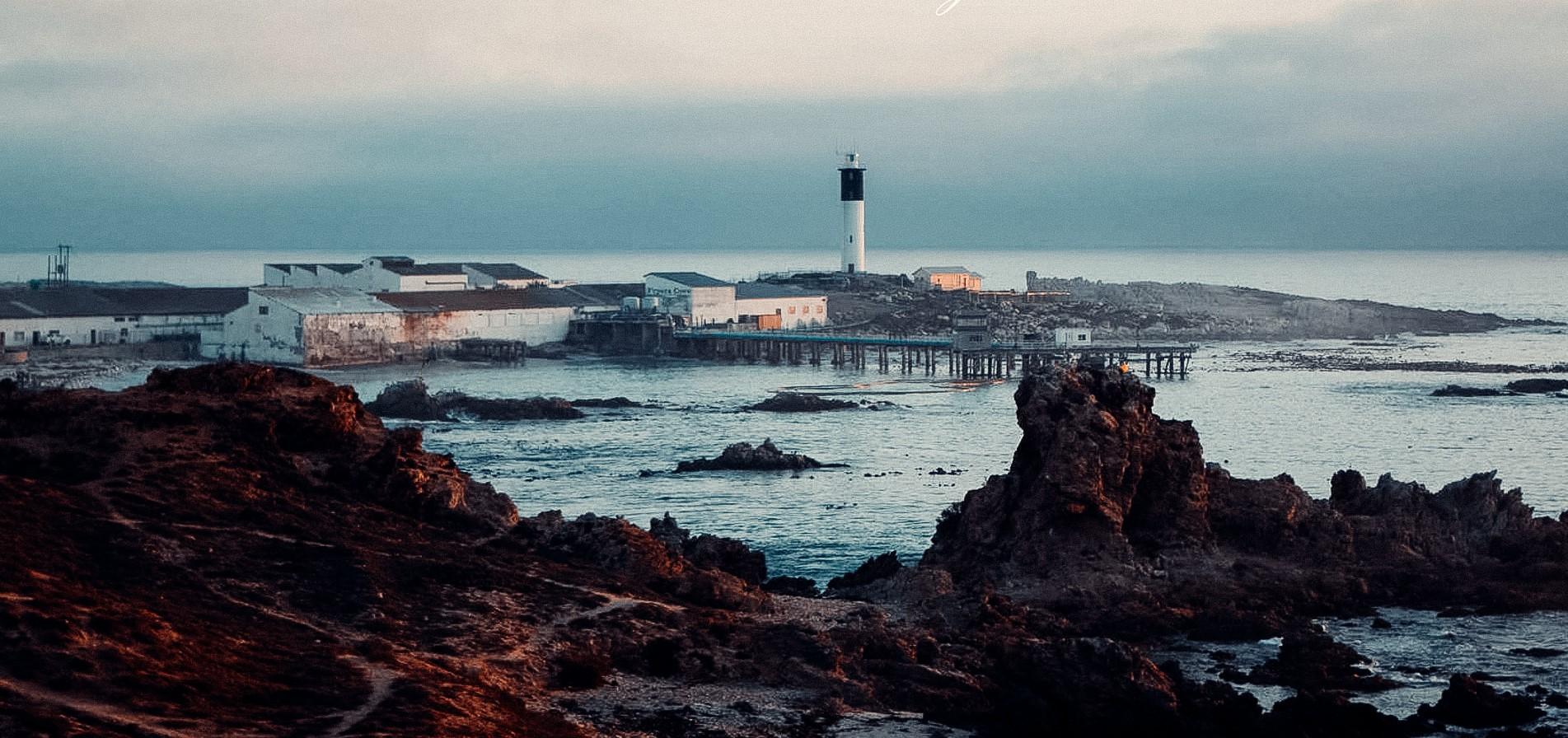 DGB Acquires unique Fryers Cove Winery on the Cape West Coast photo