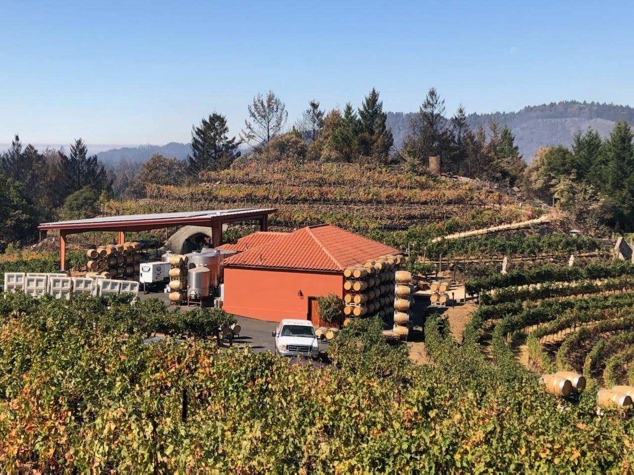 Owners, Workers Save Small Family Winery After Days-long Firefight photo