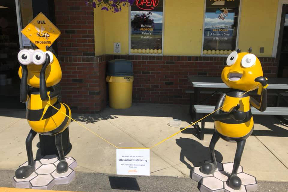 Thief Buzzes Off With Bee Sculptures From Vernon Honey Farm photo