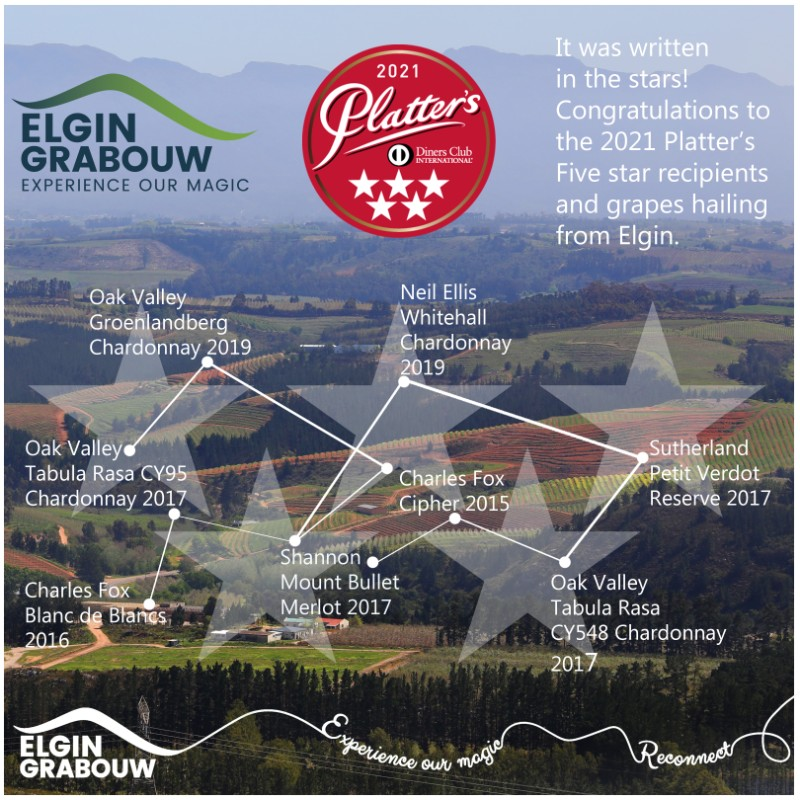 Elgin wines shine in 2021 Platter's by Diners Club photo