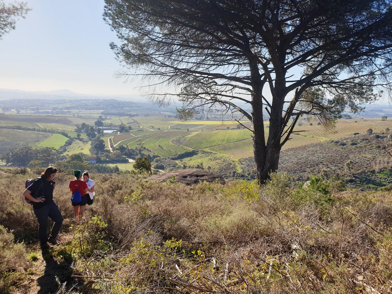 Hiking on Mooiplaas WFF Conservation Champion Status For Mooiplaas Wine Estate